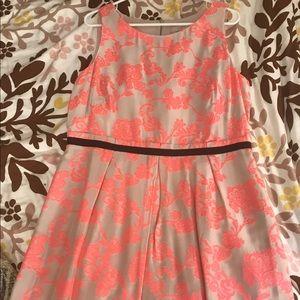Loft pink & black fit and flare dress